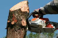 free Mitcham tree removal quotes